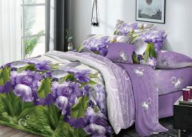 Комплект постельного белья семейный поплин Женевьева