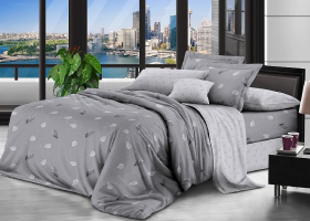 Комплект постельного белья евро поплин Ночь нежна